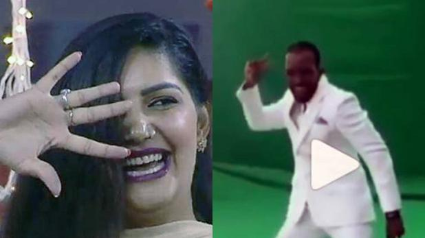 chris gayle dances on sapna chaudharry song, see viral video