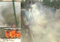 जनता कर्फ्यू के बीच शाहीन बाग में फेंका गया पेट्रोल ब'म, फिल्म डायरेक्टर ने जताई नाराजगी