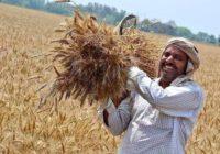 लॉक डाउन बीच परेशान किसान, शूटर दादी बोलीं-खाएगा इंडिया तभी तो लड़ेगा इंडिया…