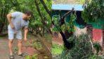 मुंबई में आये निसर्ग तूफान के बाद सलमान का फार्म हाउस हुआ अस्त व्यस्त, देखे तस्वीरें..
